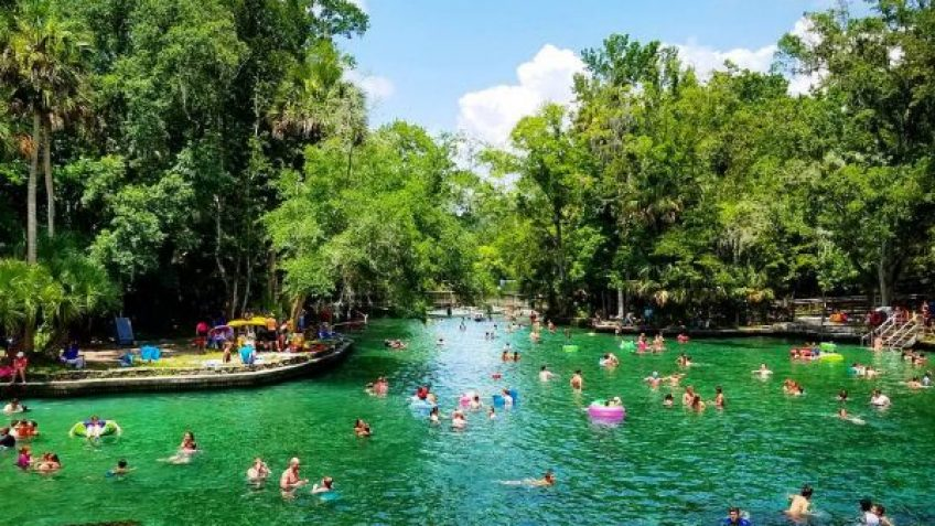 guests swimming at Wekiwa springs during swim picnic on original orlando tours