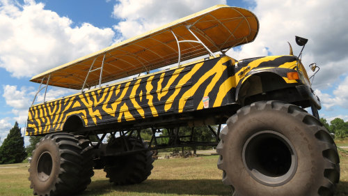 monster truck ride at u-pick citrus farm while on original orlando tours