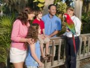 a family enjoys meeting a parrot at the Central Florida Zoo during an original orlando tours prior to a visit to historic sanford florida for lunch