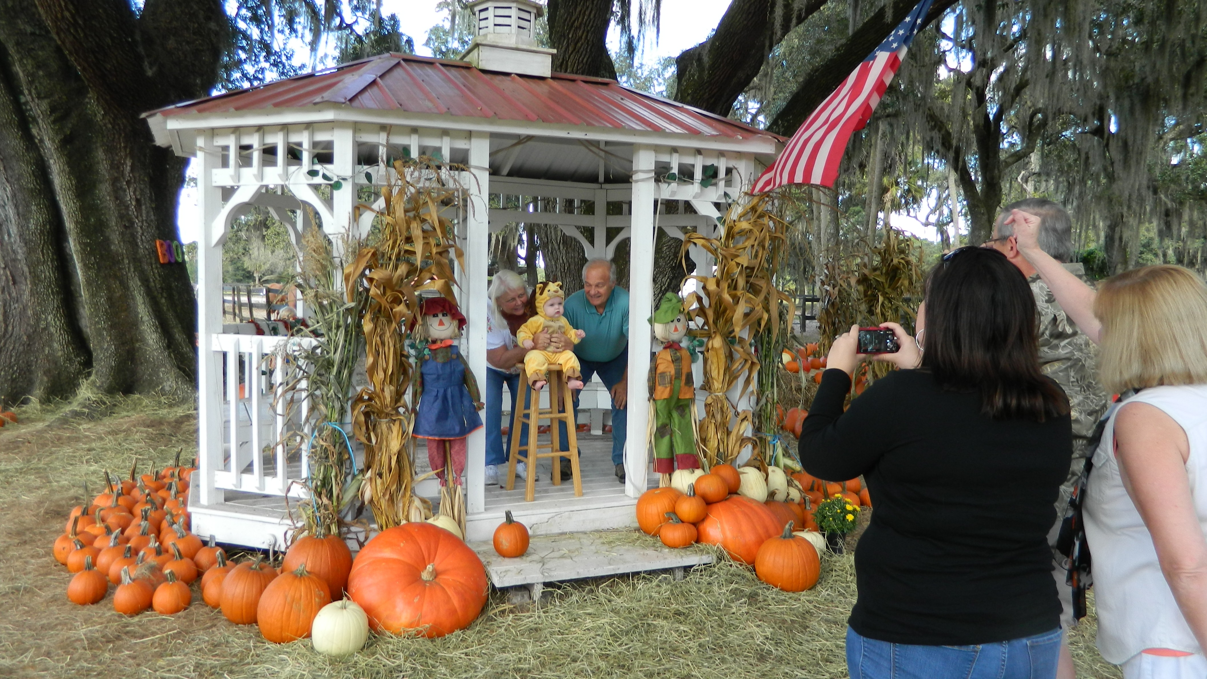 taking photos with pumpkins at pumpkin patch during fall festival on original orlando tours