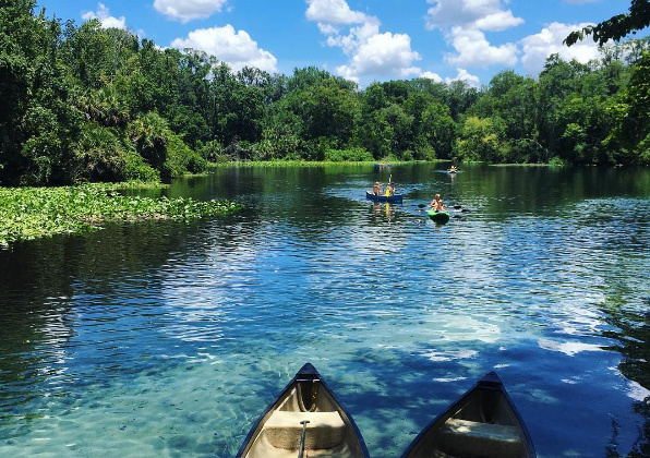 guests kayaking at Wekiwa springs during swim picnic on original orlando tours